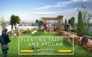 Residential Complexes around Planting Trees