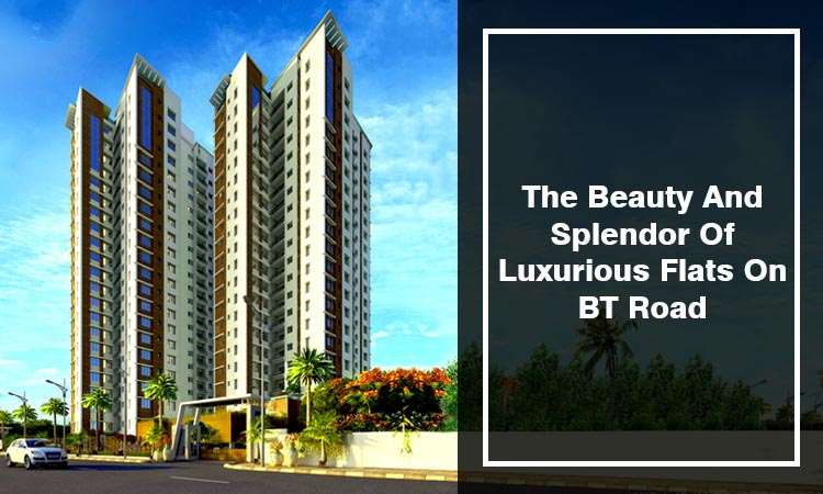 The Beauty And Splendor Of Luxurious Flats On BT Road