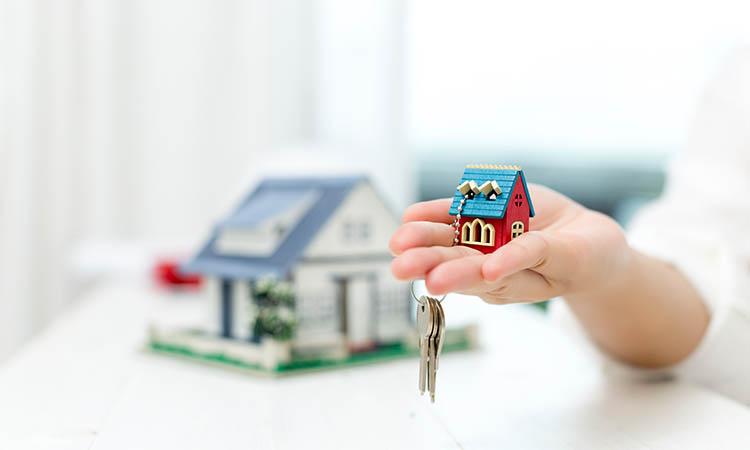 Primary or Resale Property