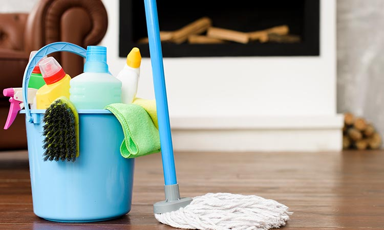 Cleaning and Sanitizing Products